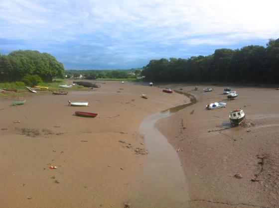 River Taw