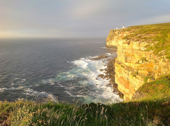 Dunnet Head 6